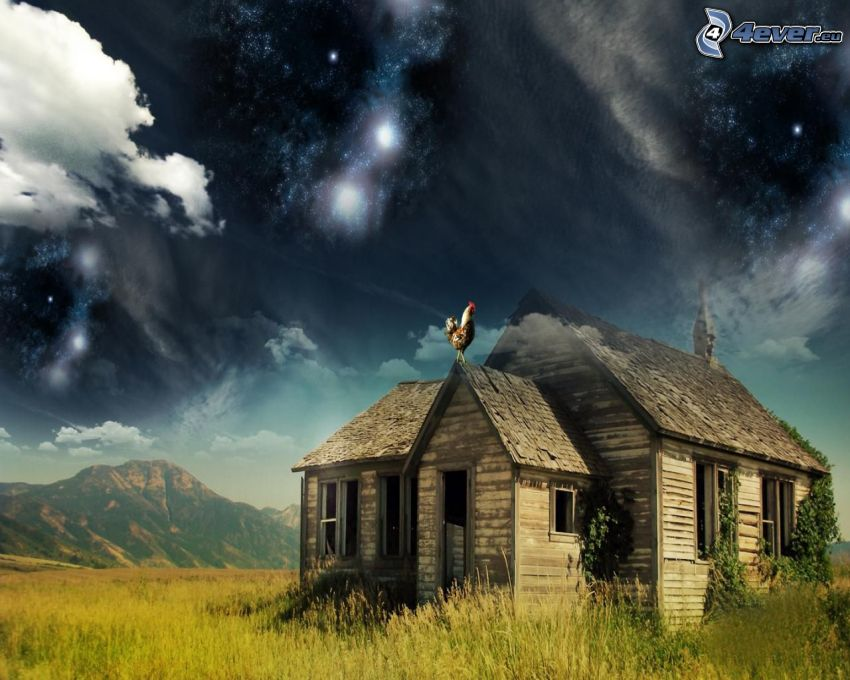 abandoned house, wooden house, meadow, rooster, hill, starry sky
