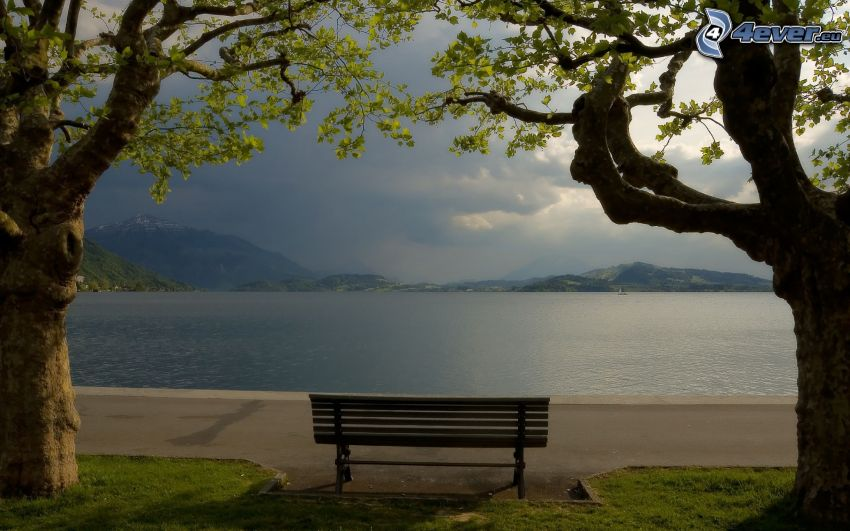 bench near lake, trees, mountain