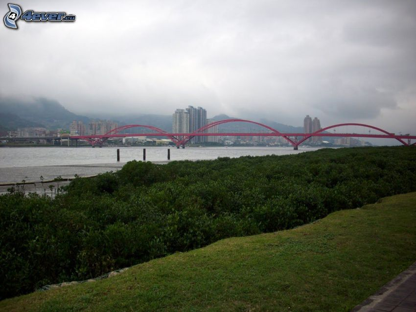 Guandu Bridge, forest, skyscrapers