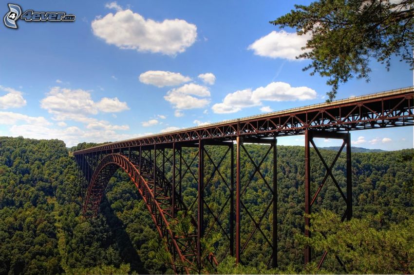 New River Gorge Bridge, forest, clouds