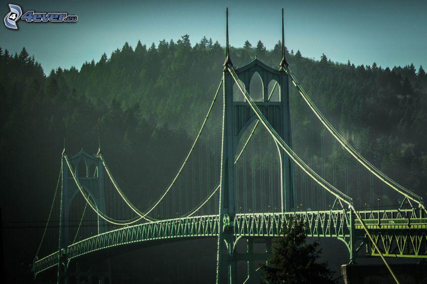 St. Johns Bridge, forest, hill