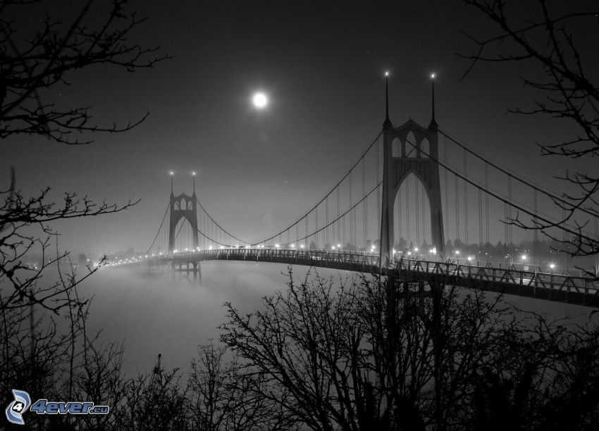 St. Johns Bridge, lighted bridge, moon, night