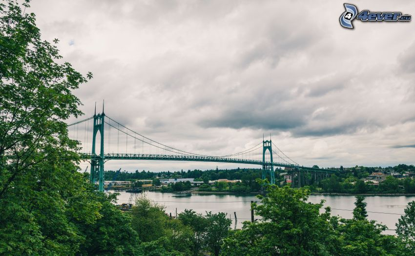St. Johns Bridge, trees, Willamette