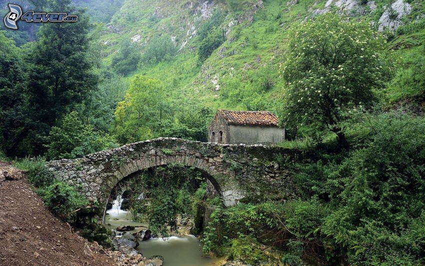 stone bridge, greenery