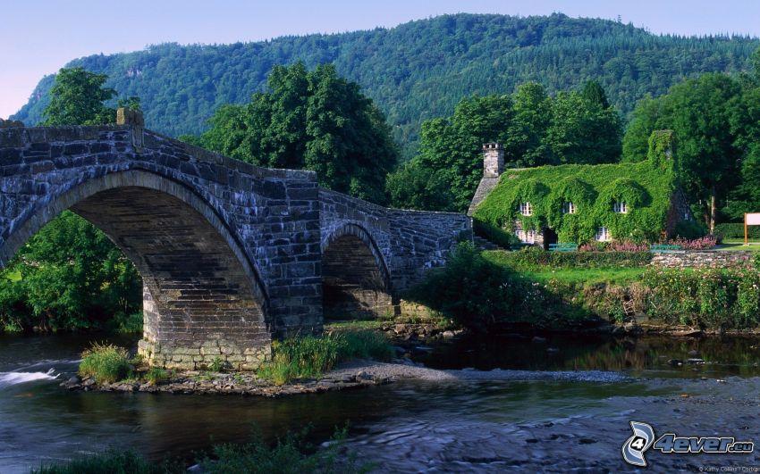 stone bridge, house, forest, greenery