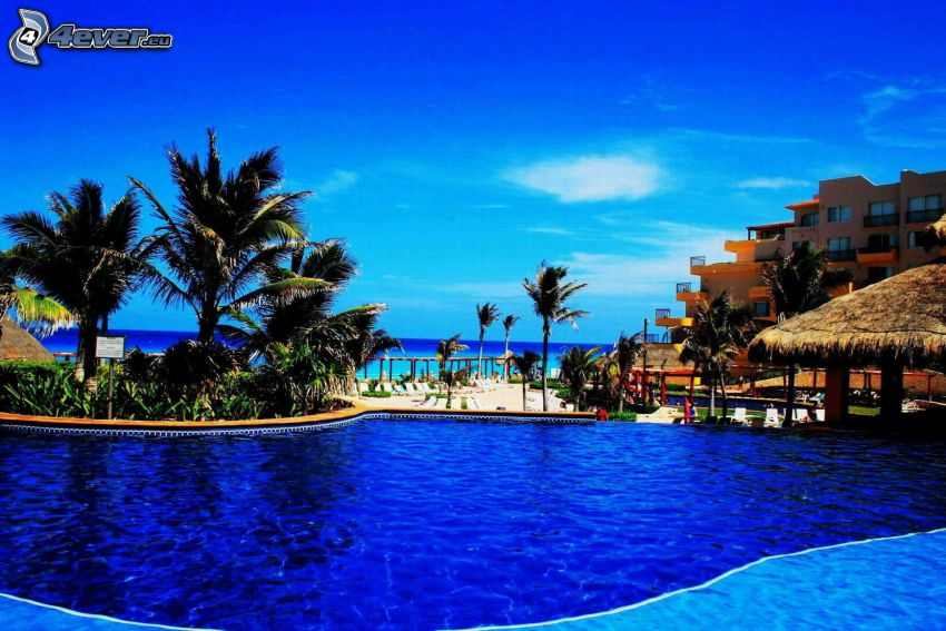Cancún, pool, hotel, palm trees, open sea