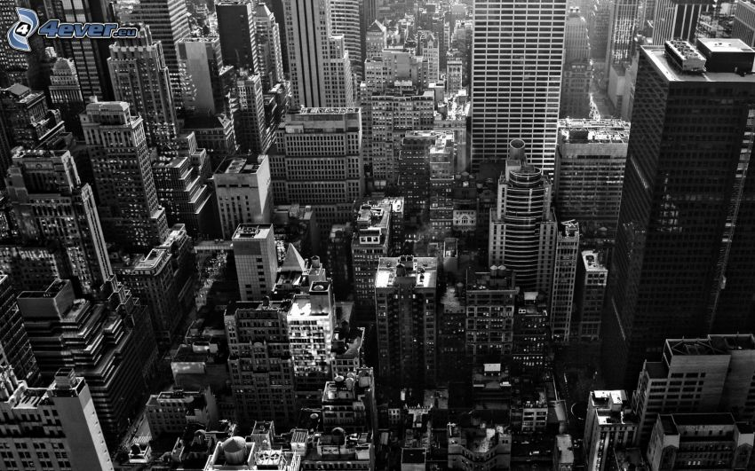 New York, view of the city, skyscrapers, black and white