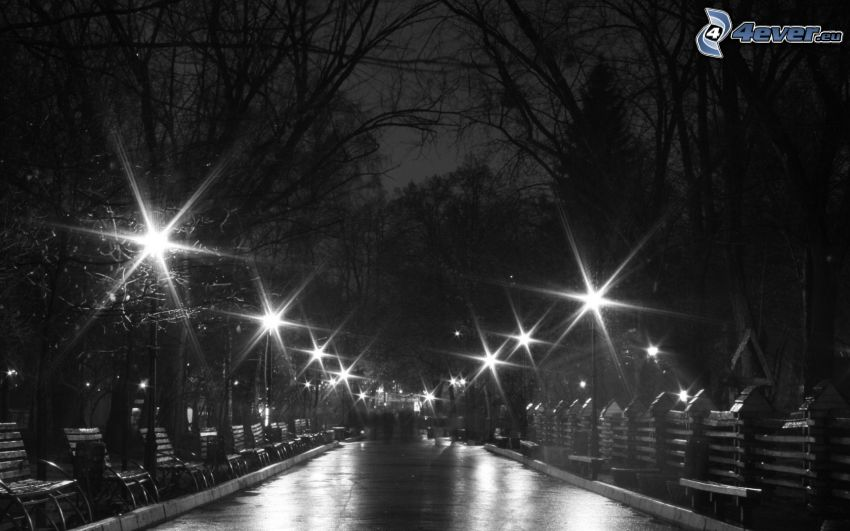night city, park, street lights