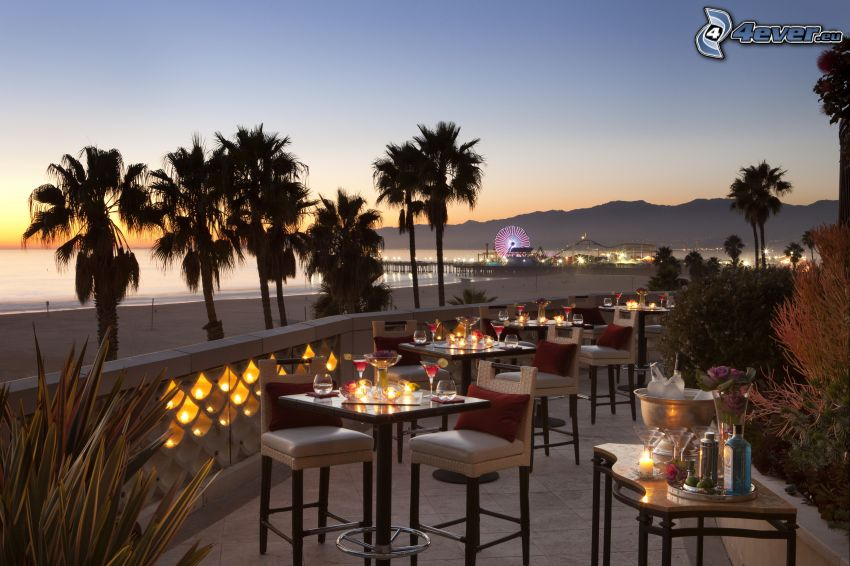 restaurant, terrace, ferris wheel, palm trees, Santa Monica