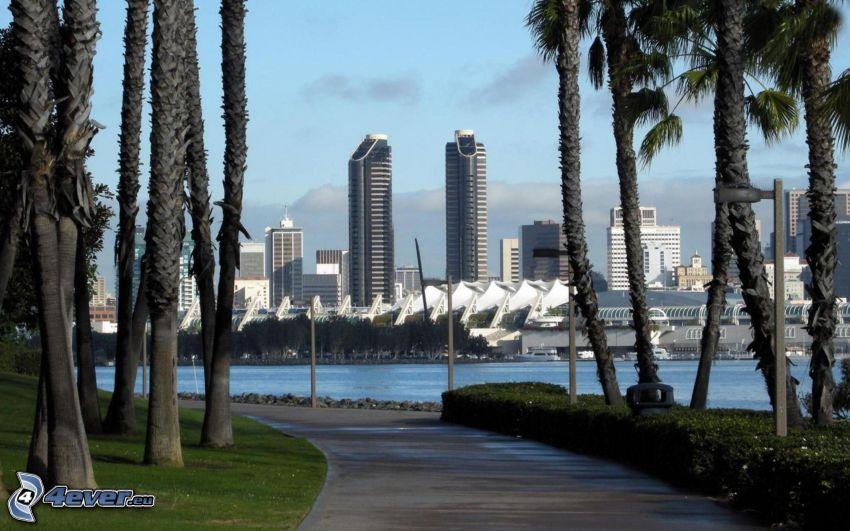 San Diego, palm trees, skyscrapers, sidewalk