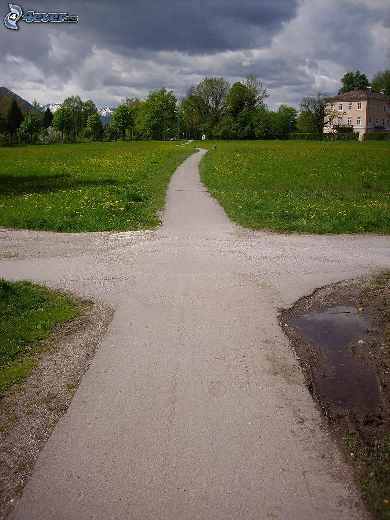 sidewalk, crossroads, trees, house