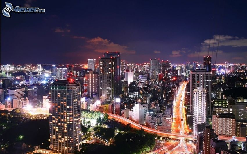 Tokyo, night city