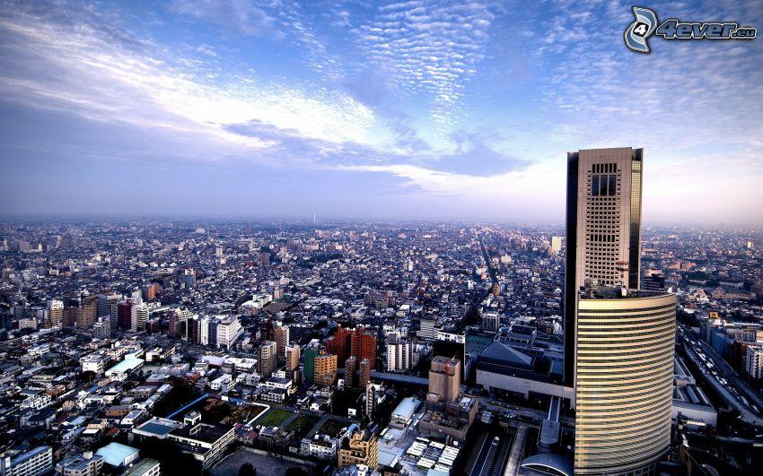 view of the city, skyscraper