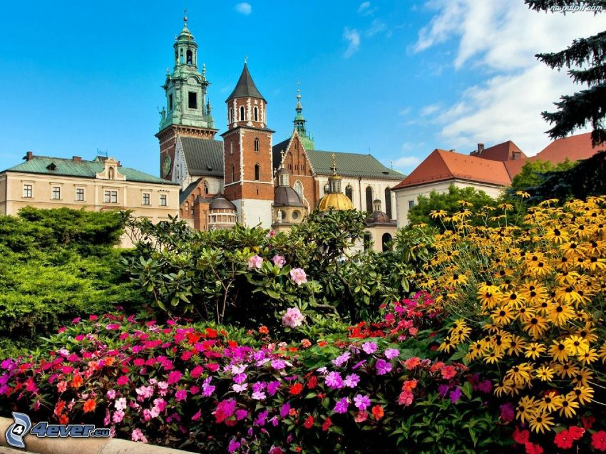 Wawel castle, Kraków, colored flowers