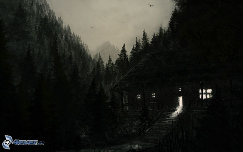 cottage, night, rain, forest