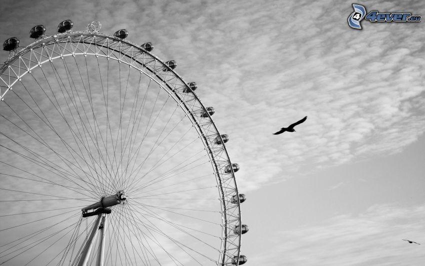 ferris wheel, clouds, birds