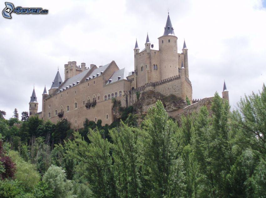 Alcázar of Segovia, forest