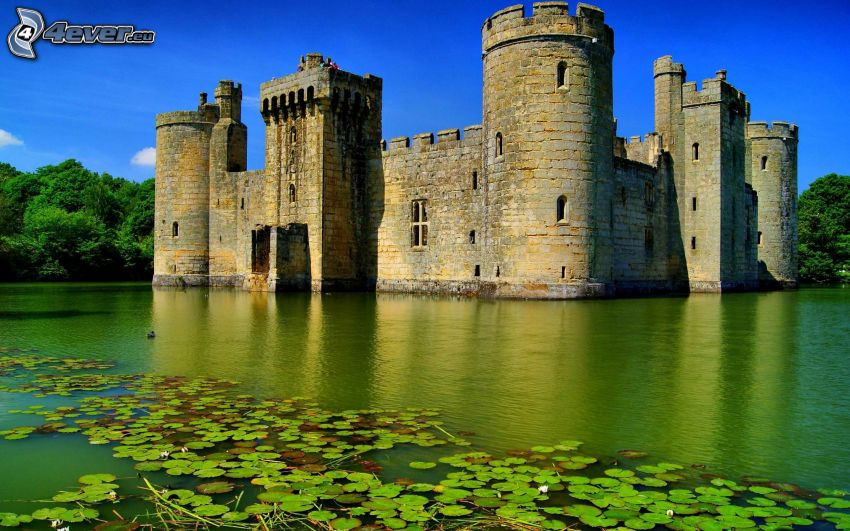 Castle at the water, water lilies