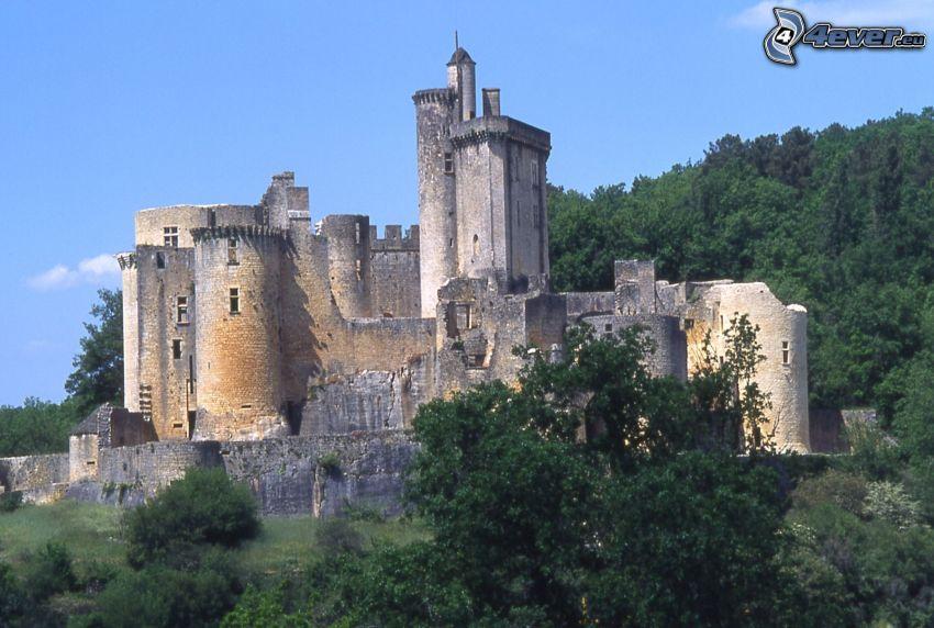 château de Bonaguil, forest