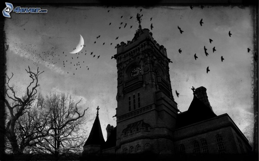 church, moon, flock of birds
