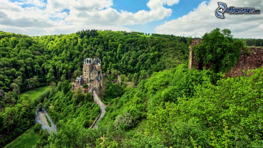 Eltz Castle, forest, greenery