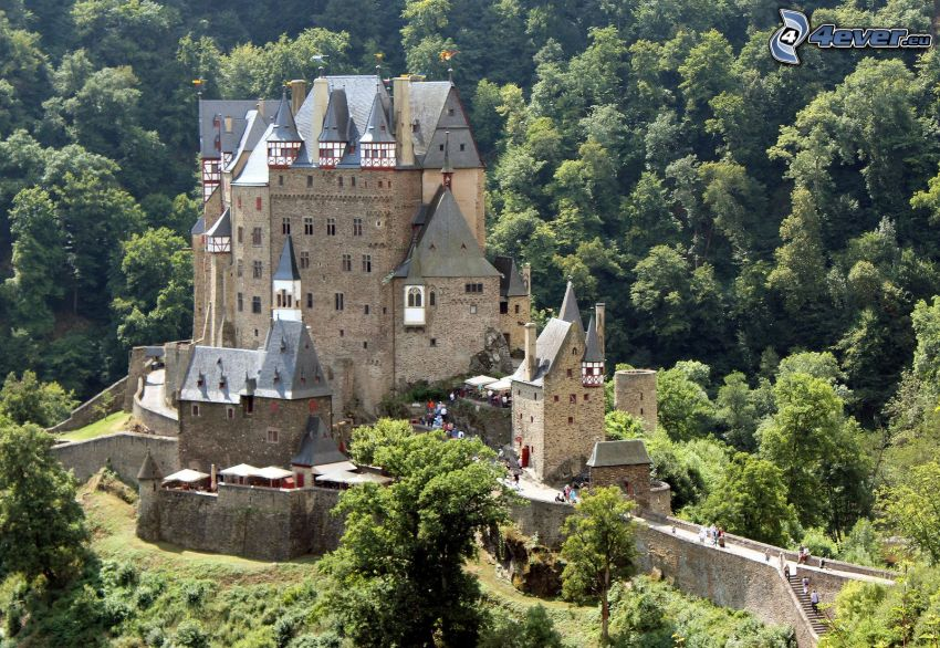 Eltz Castle, green forest