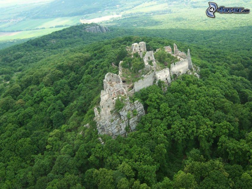 Gýmeš Castle, ruins, forest