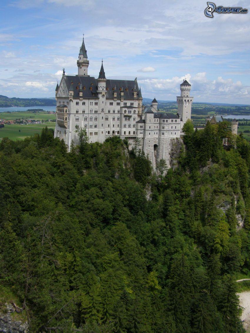 Neuschwanstein castle, Bavaria, forest, sky