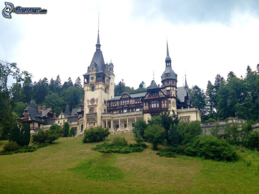 Peles Castle, forest, meadow