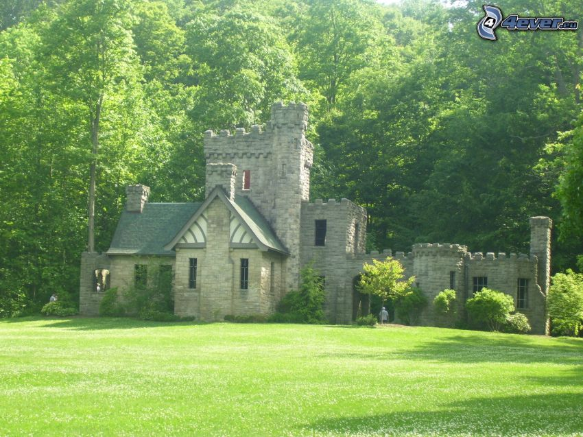 Squire's Castle, forest, lawn