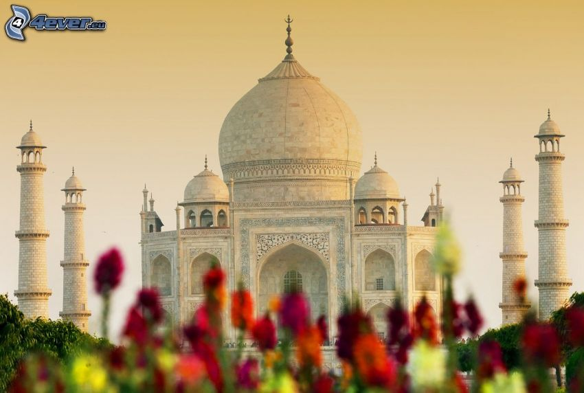 Taj Mahal, flowers