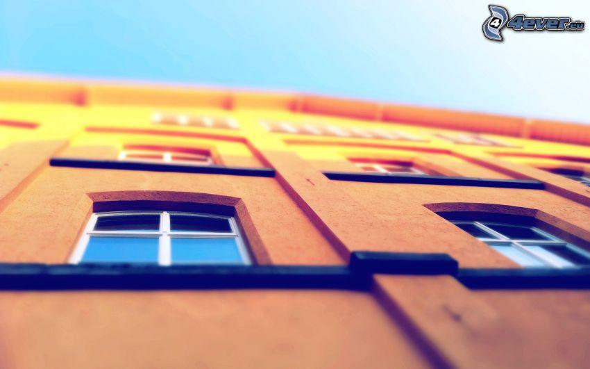 house, windows