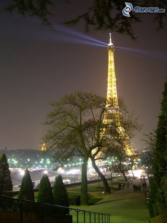 illuminated Eiffel Tower, park, trees, night city
