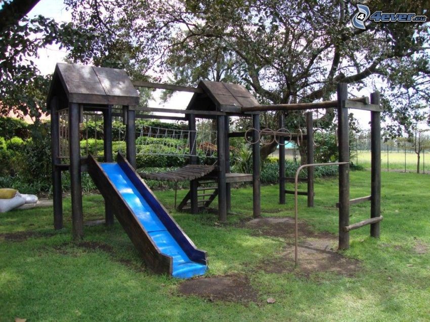 jungle gym, trees