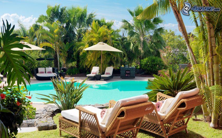 pool, lounger