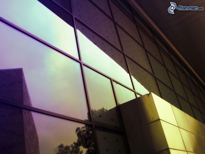 windows, reflection