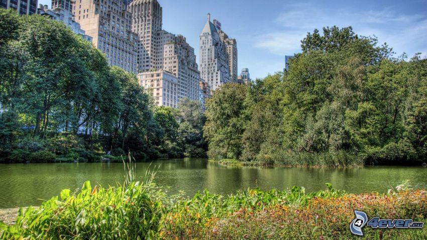 Central Park, New York, skyscrapers