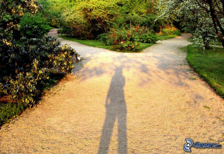 crossroads, sidewalk, woman silhouette, shadow