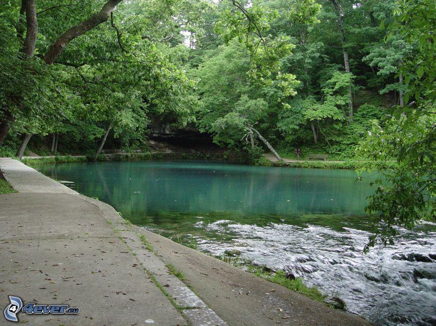 lake, green trees, sidewalk