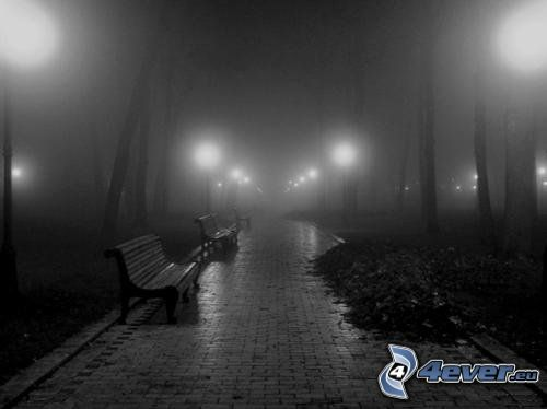 night, evening, park, bench, sidewalk, fog, lights