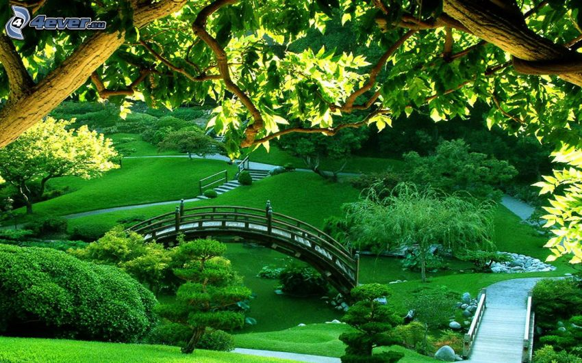 park, bridge, sidewalk, greenery