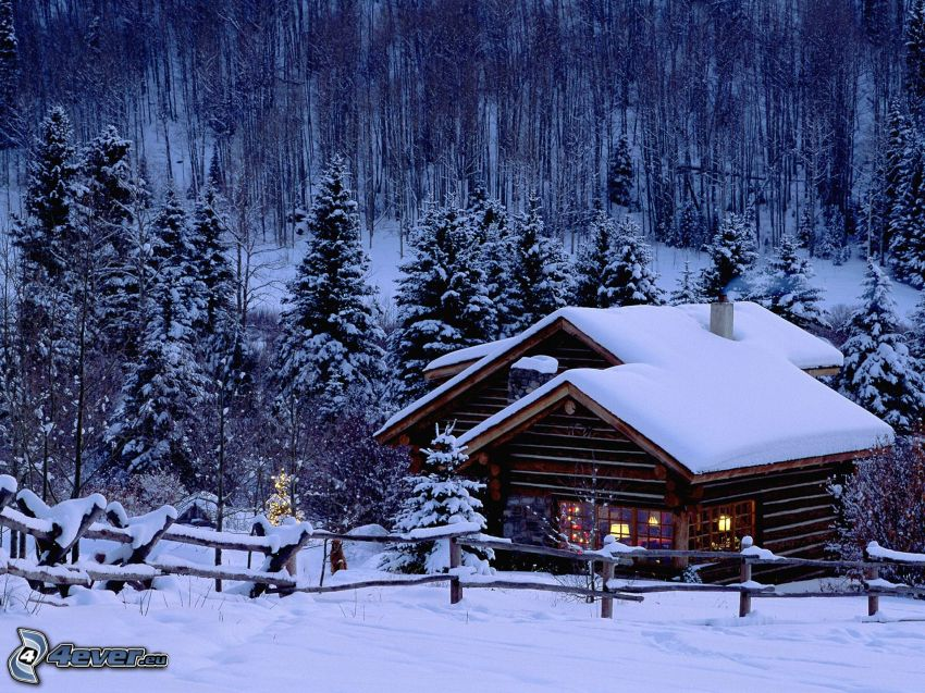 snowy cottage, forest, winter