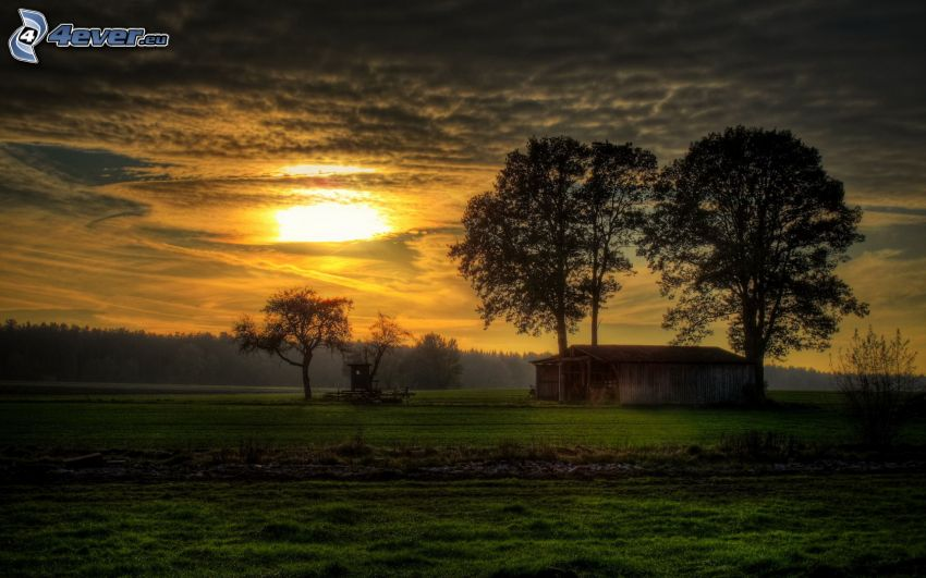 stable, meadow, trees, sunset, dark clouds