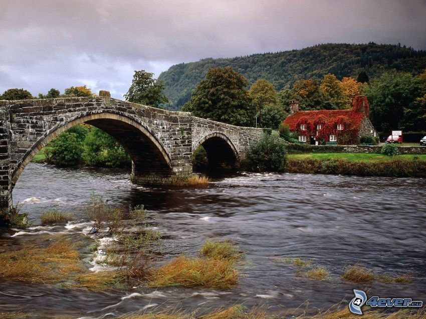 stone bridge, River, house, hill, forest