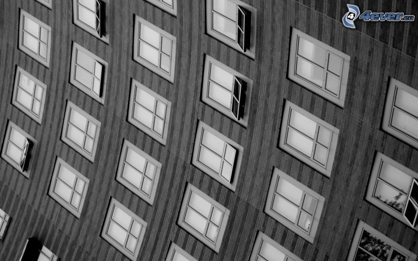 windows, skyscraper