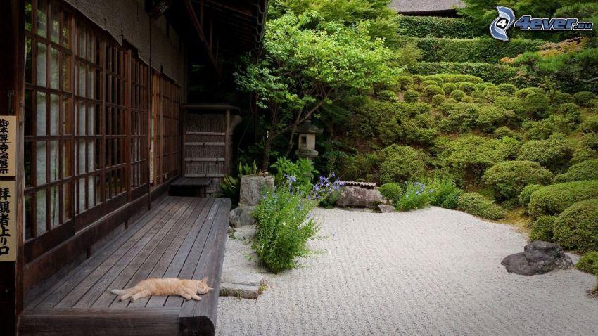 wooden house, sleeping cat, greenery