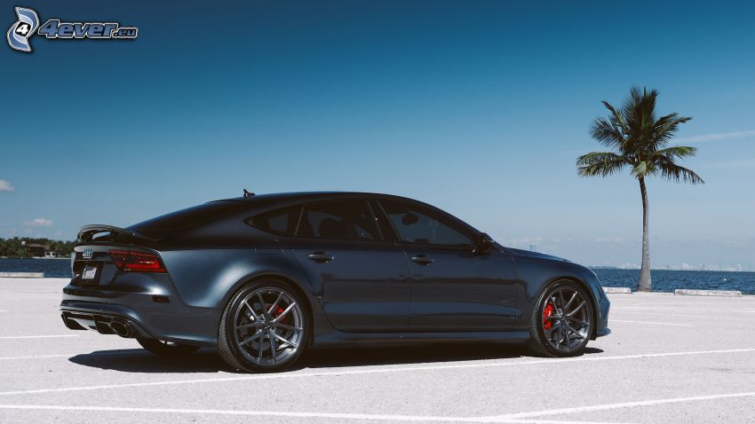 Audi RS7, palm tree, sea