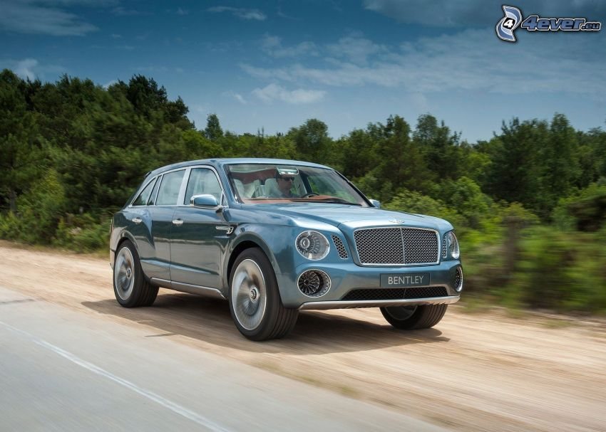Bentley EXP 9F, speed, coniferous forest