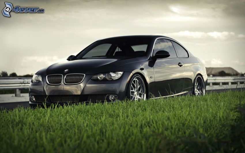 BMW, grass