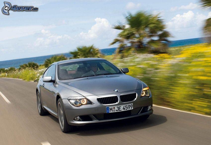 BMW 6 Series, speed